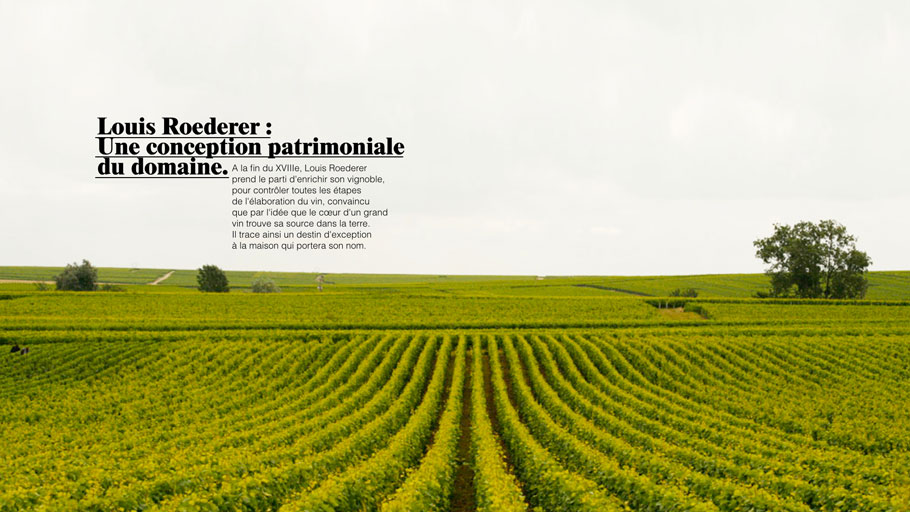 roederer - clemence devienne